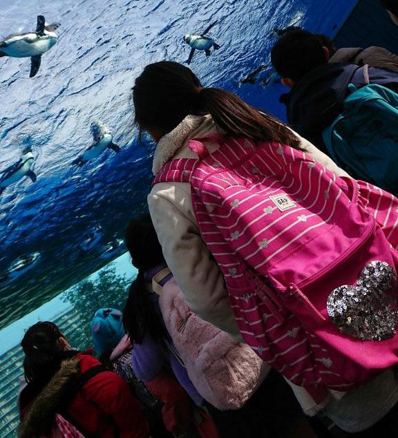 サンシャイン水族館で、輝く子どもたちの笑顔